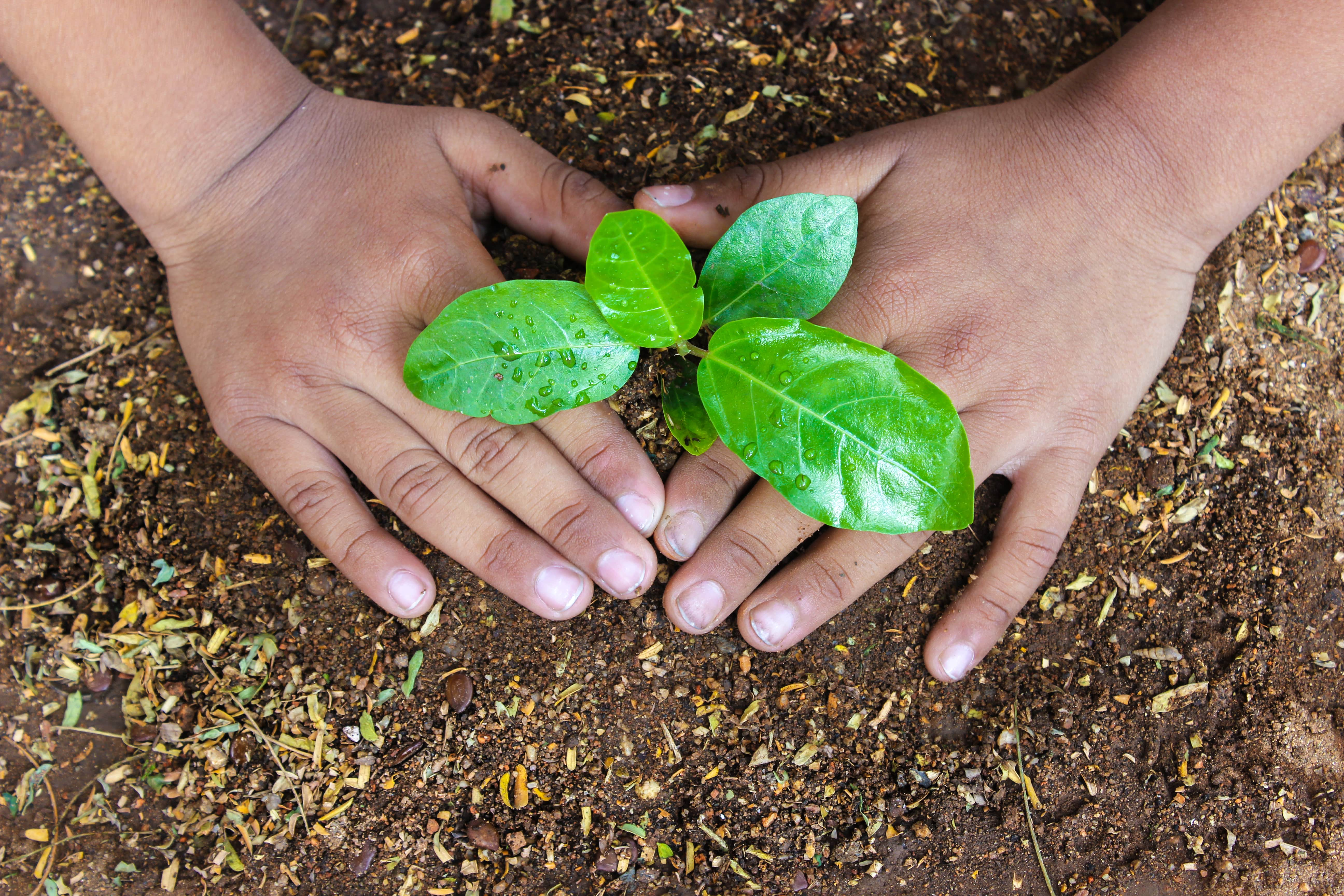 Pledge Your Support of Environmental Action